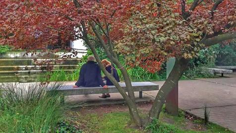 Jardins da Gulbenkian: ar puro no meio da cidade