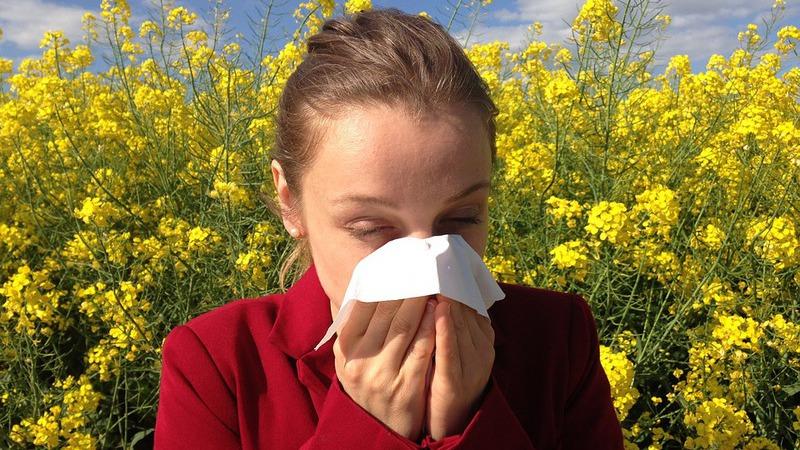 As alergias da Primavera começaram a atacar? Há uma app para isso