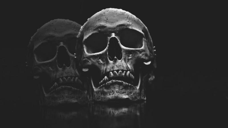 Há caveiras, esqueletos e outras partes do corpo humano à venda no Instagram