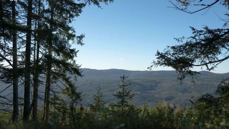 Florestas, lagos, ilhas, falésias… Suécia está a dar tudo no Airbnb
