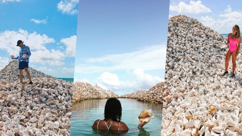 Esta ilha artificial foi construída com milhões de conchas e é um sucesso nas redes sociais