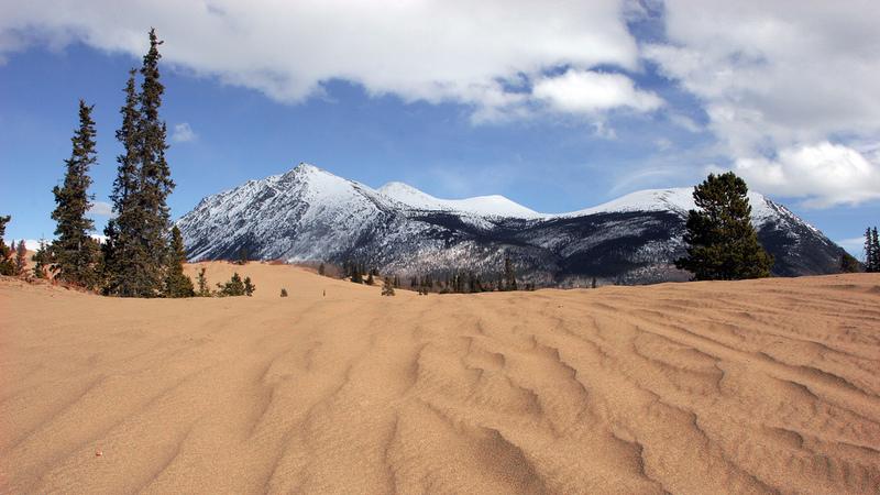 O estranho deserto que se formou no meio da neve