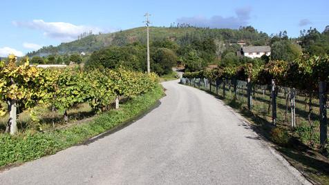 Sistelo, a aldeia parada no tempo que ganhou o título de pequeno Tibete português