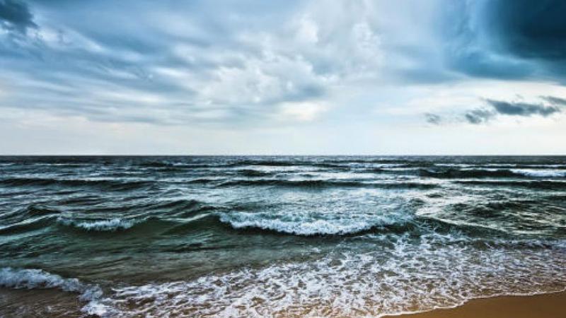 Descubra os mistérios dos oceanos numa sala de aula interativa em Ocean School