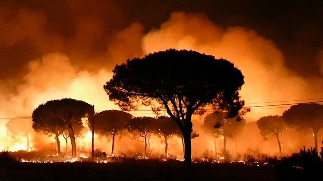 """""""Foi um caos"""". Incêndio no Sul de Espanha obriga a retirar 2 mil pessoas"""
