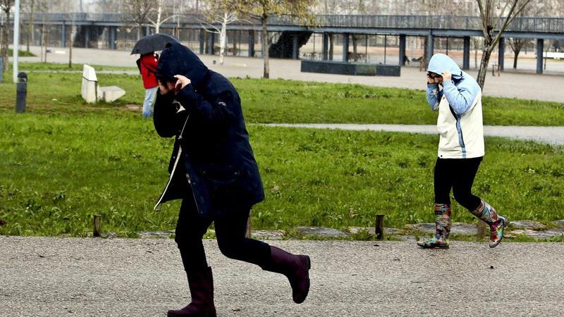 Esqueceu-se do chapéu-de-chuva. Será melhor andar ou correr?