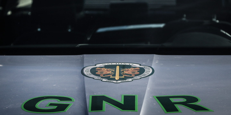Cavalo da GNR fugiu de militar e atravessou o centro do Porto sozinho