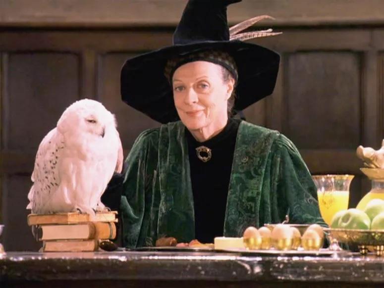 Só um verdadeiro nerd do Harry Potter sabe o nome do meio de 8 destas 10 personagens