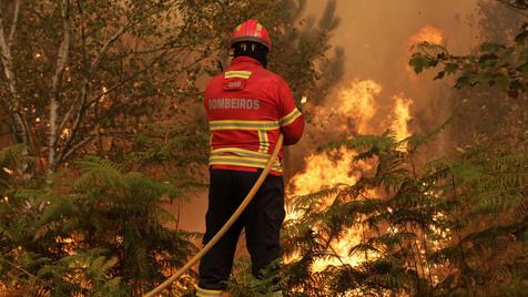 E ter (muitos) mais bombeiros profissionais?