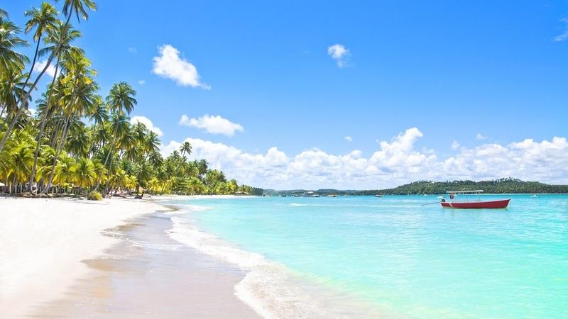 Dê um mergulho no mar de Salvador ao Recife