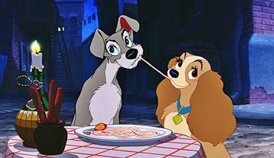 """""""A Dama e o Vagabundo"""": Disney vai fazer uma nova versão e a protagonista já foi escolhida"""