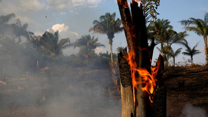 """Amazónia: Bolsonaro aponta dedo a ONGs e governadores por """"incendiarem"""" floresta e não """"mexerem uma palha"""""""