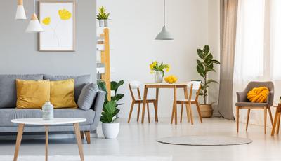 Sente falta de verde em casa? Ideias de decoração que vão tornar a sua sala mais campestre