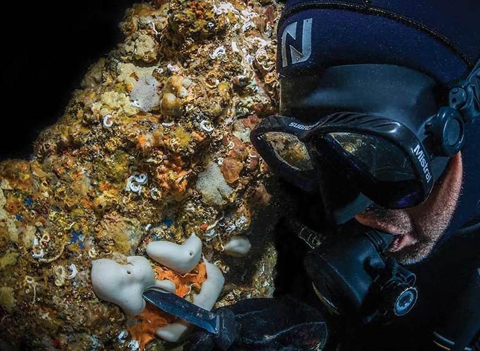 Grutas marinhas terapêuticas em Sagres