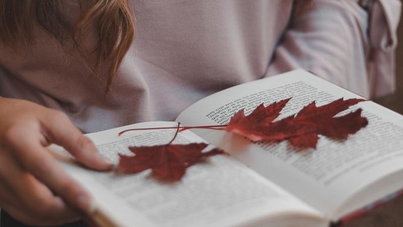 Os melhores livros para ler no outono