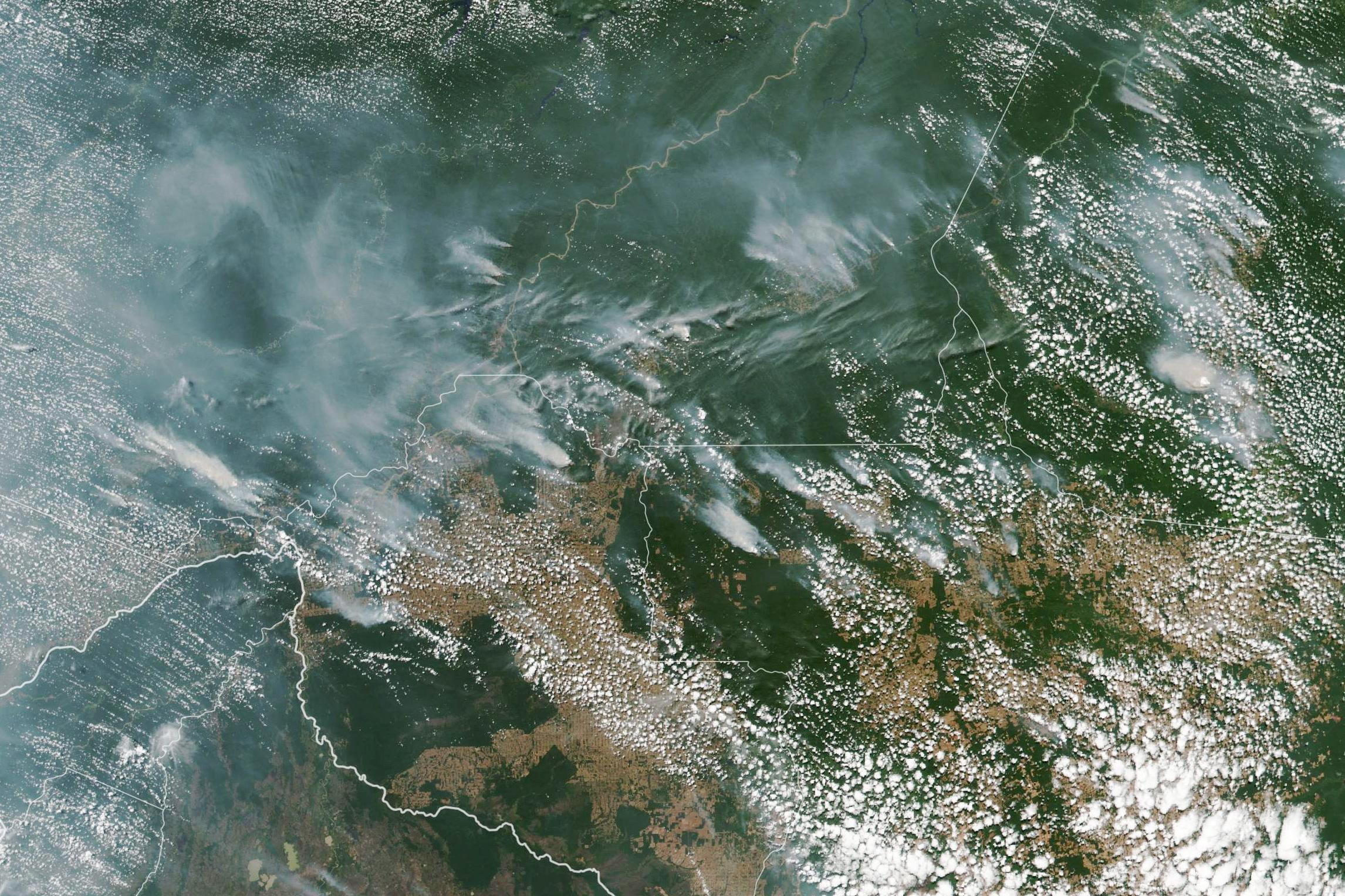 Mais de metade dos fogos no Brasil estão a acontecer na Amazónia. O que se passa no pulmão do mundo?