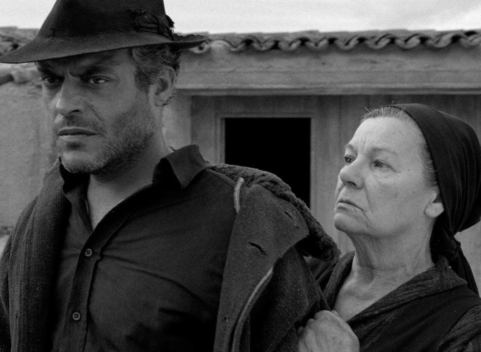 """Prémios Sophia: """"Raiva"""", de Sérgio Tréfaut, foi o melhor filme português de 2018"""