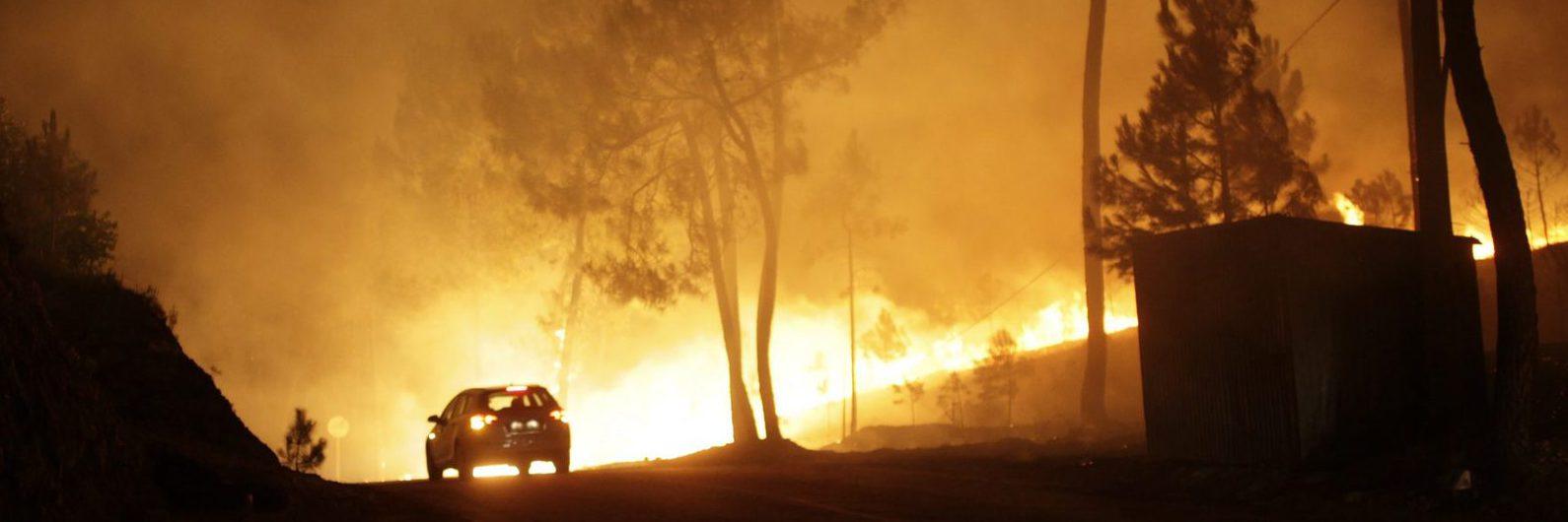 Incêndios: Governo decreta estado de calamidade pública preventiva