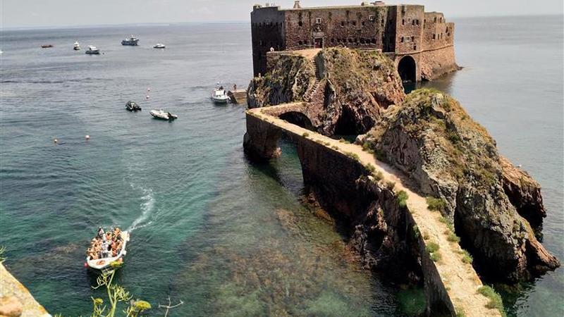 Ilha das Berlengas vai impor limite diário de 550 visitantes em simultâneo