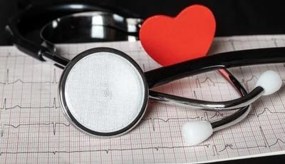 O coração é um dos órgãos que mais sofre durante e depois de um cancro
