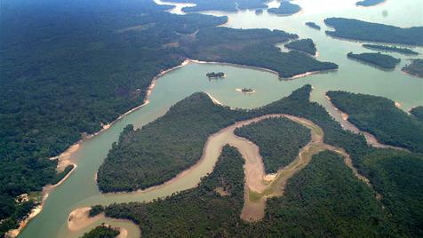 Amazónia - Alerta Global