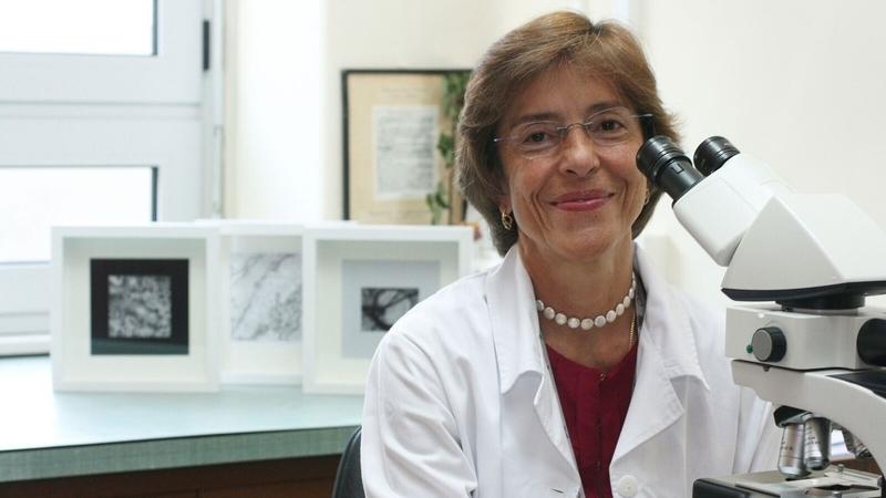 Fátima Carneiro eleita a patologista mais influente do mundo