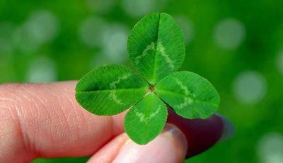 Proteja-se com estes 25 amuletos da sorte