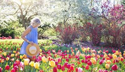 O significado do Equinócio da primavera