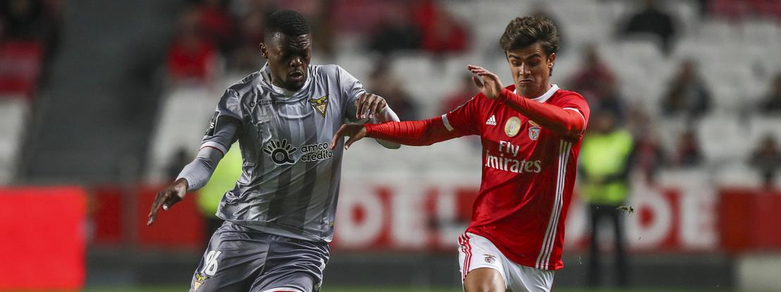 """Relações suspeitas entre Benfica e Aves, incluindo """"contratos com adendas leoninas"""""""