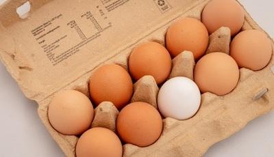 Os prazos de validade dos alimentos são de confiança?
