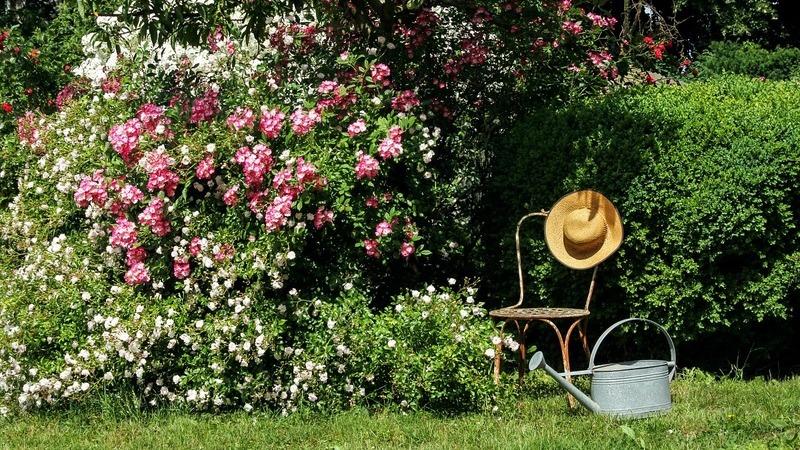 Os 10 mandamentos do arquiteto Gonçalo Ribeiro Telles para a criação de um jardim