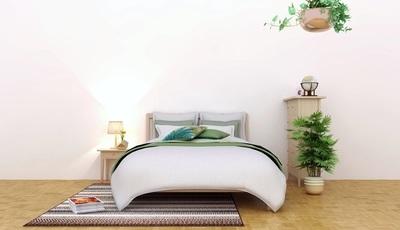 Faz mal dormir com plantas no quarto? 8 mitos esclarecidos por uma médica