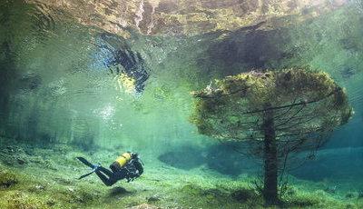 Já imaginaram dar um passeio no parque... mas debaixo de água?