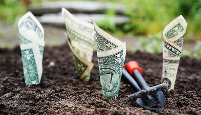 Onde aplicar o seu dinheiro num ambiente de taxas de juro negativas?