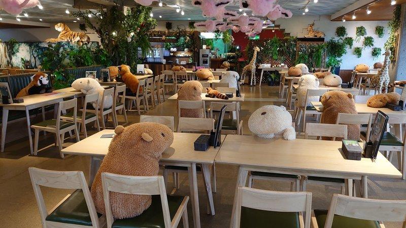 Restaurante de Jardim Zoológico usa animais de peluche para manter o distanciamento social