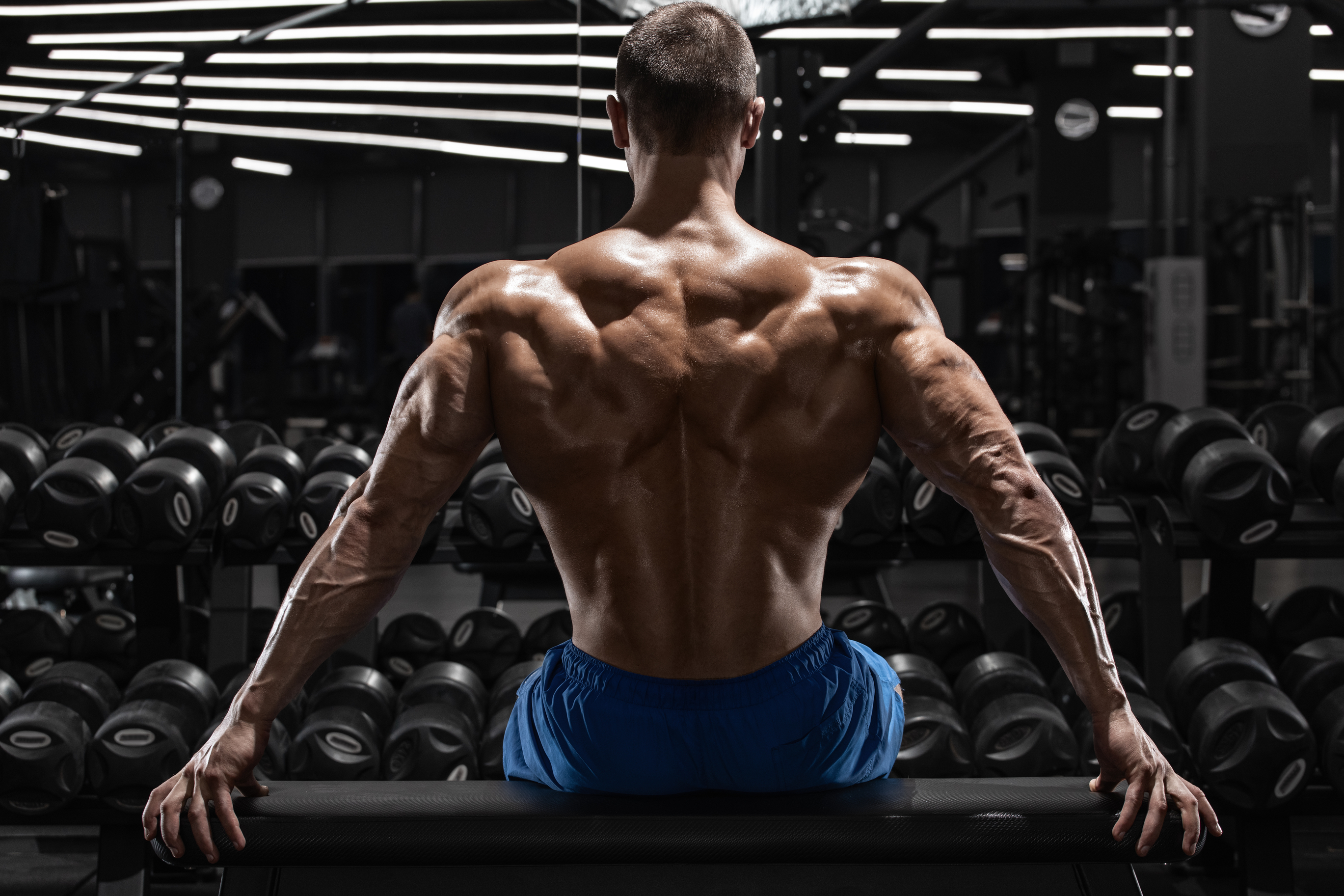 Testosterona. Músculos de super-homem. Vale a pena o risco?