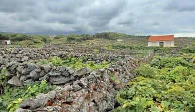 Terceira: as paisagens que o vão fazer perder-se de amores por esta ilha açoriana