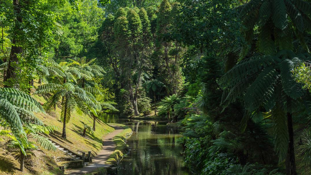 O Parque Terra Nostra nas palavras de Fernando Costa, Jardineiro Chefe