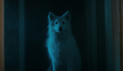 Festival de Sundance vai passar curta-metragem de Gonçalo Almeida