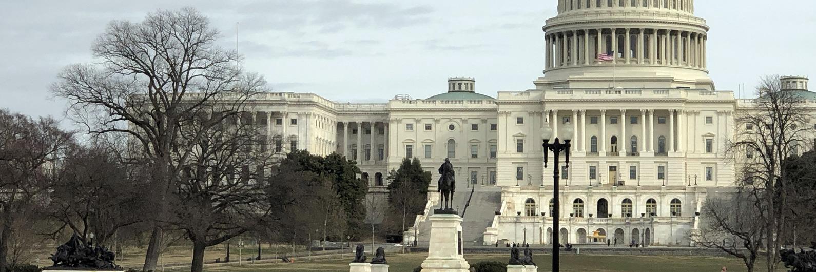 Washington DC: as escolhas de uma portuguesa a viver na América