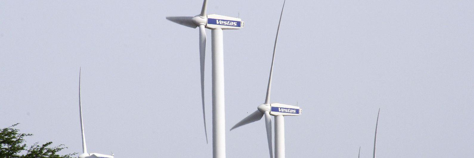 Associação Zero apela a novas metas de eficiência energética em véspera de Conselho Europeu