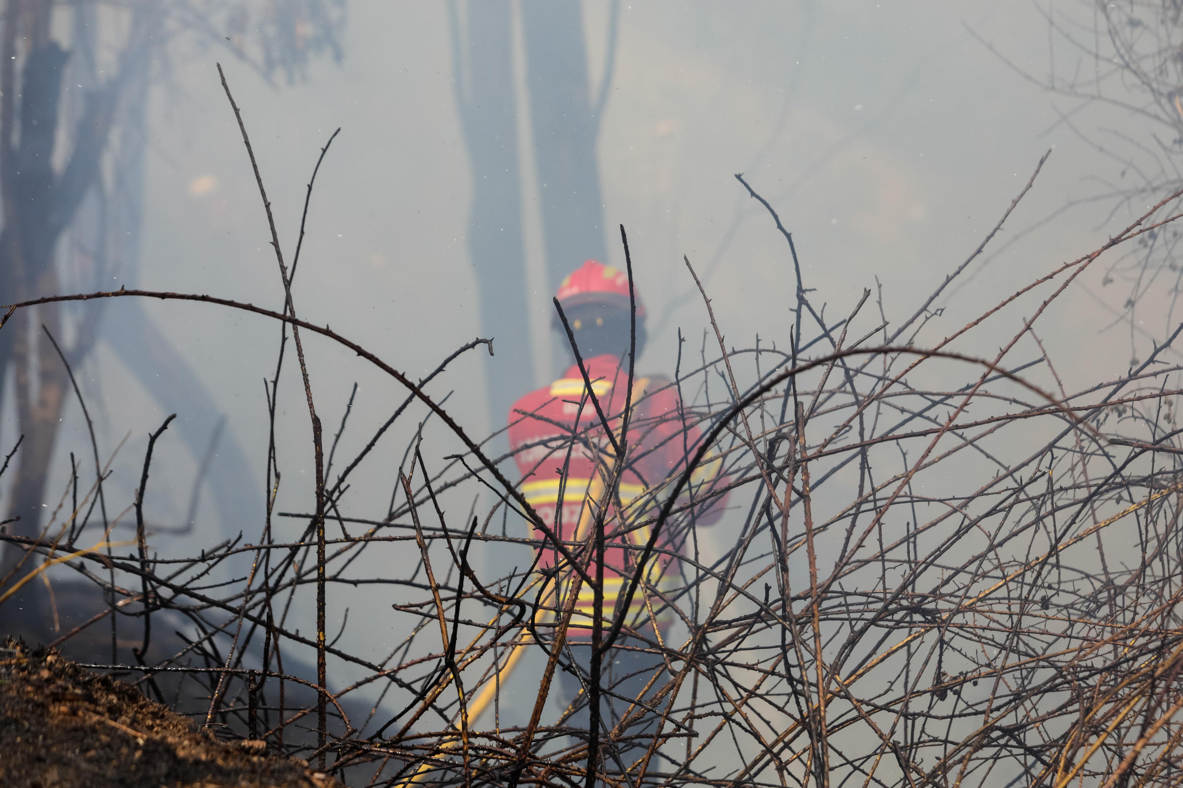 Reacendimento no fogo da Covilhã já foi controlado