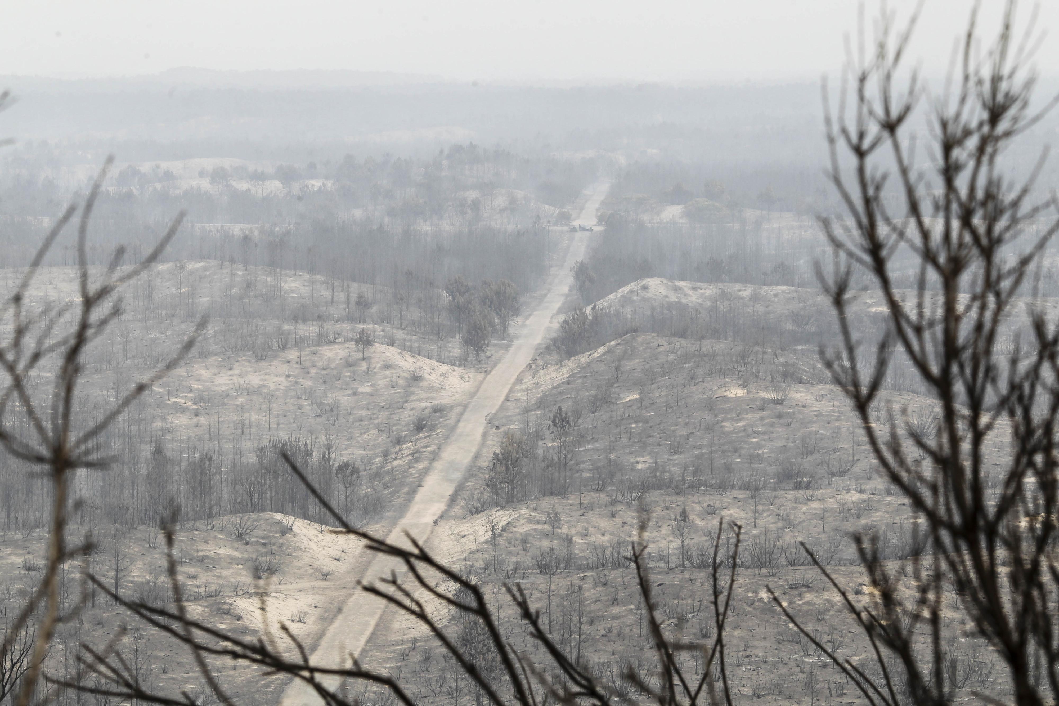 Costa anuncia unidade de missão para reforma dos sistemas de prevenção e combate aos incêndios