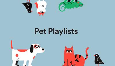 """""""Pet Playlists"""": Spotify seleciona música para acalmar animais de estimação"""