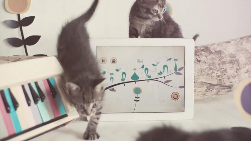 Ear Cat: uma aplicação para treinar o ouvido com a ajuda de gatinhos