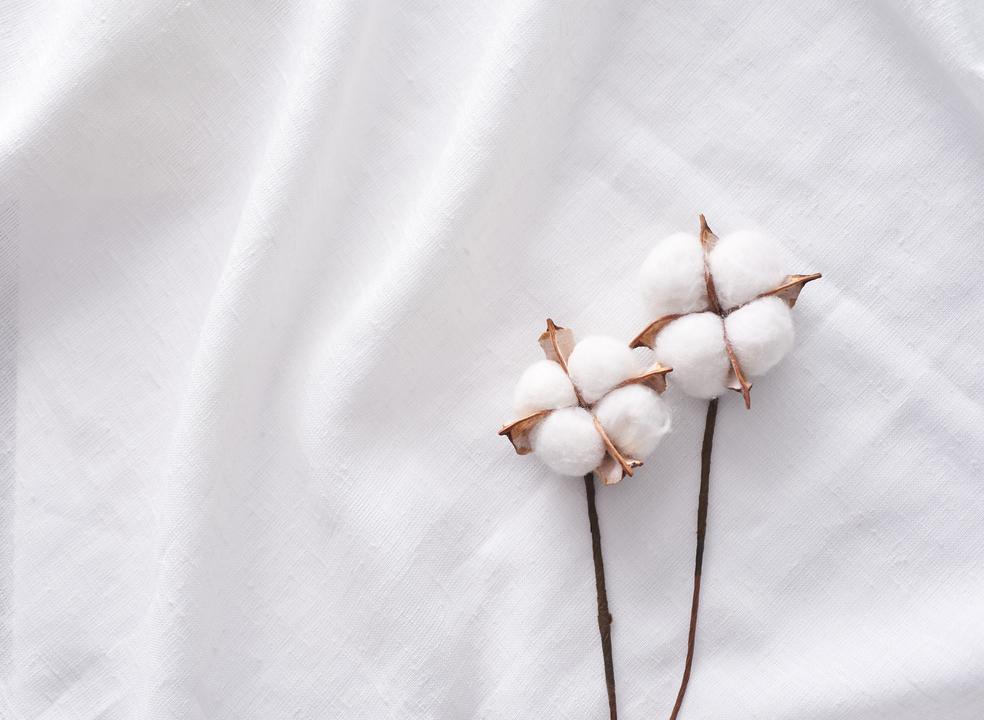 Tecidos de algodão. Sabe qual é a melhor forma de os limpar?