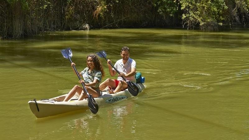 Festival no Algarve promove turismo de natureza com atividades gratuitas