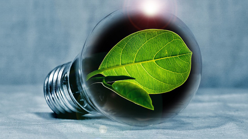 Fortia e Engie assinam acordo de compra e venda de energia para indústrias ibéricas