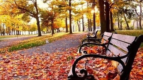 As cores do outono