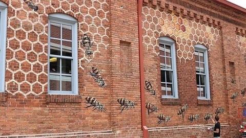 Este artista está numa missão, pintar 50 mil abelhas pelo mundo
